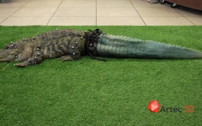Alligator prosthesis made with 3D scanning
